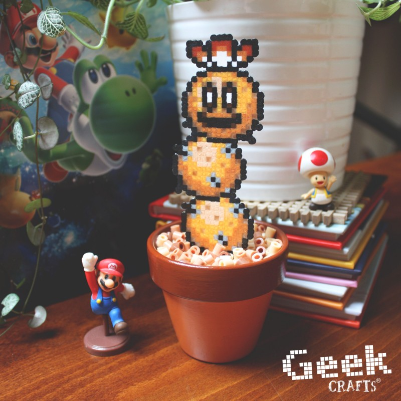 cactus-pokey-brun Geek-crafts