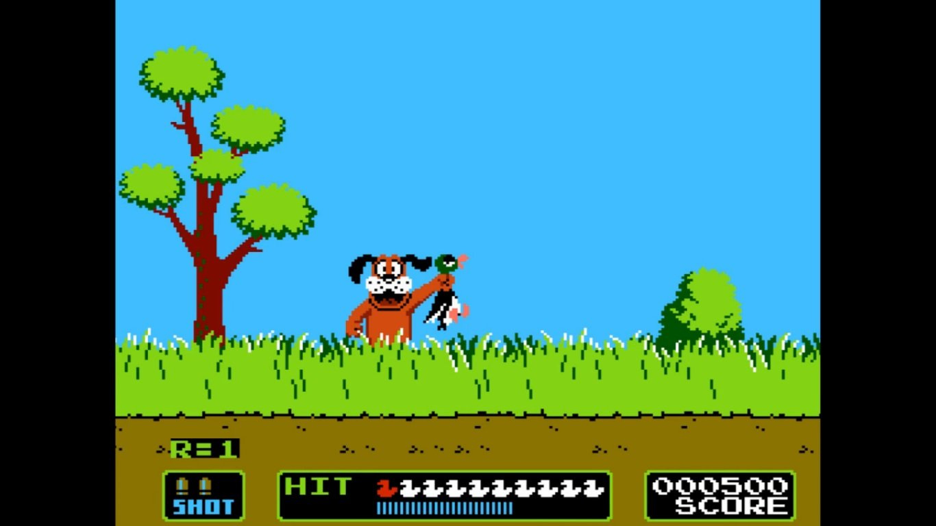 duck hunt Fille Geek