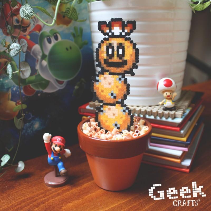 cactus-pokey-brun Geek-crafts