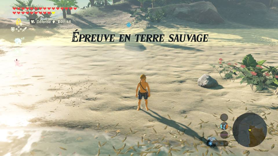 Île Finalis Breath of hte Wild Fille Geek