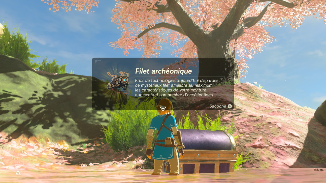 Harnachement antique BOTW Mont Satori Fille geek